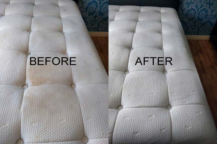 Upholstery Cleaning Seaton
