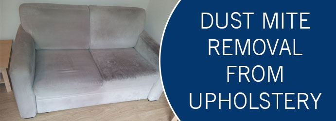 Dust Mite Removal From Upholstery Melbourne