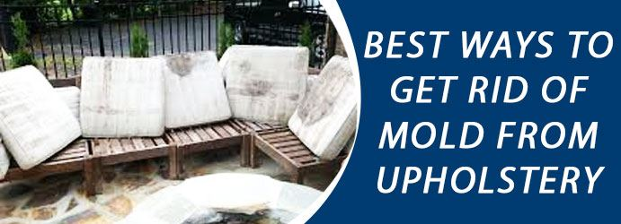 Get Rid Of Mold From Upholstery Melbourne