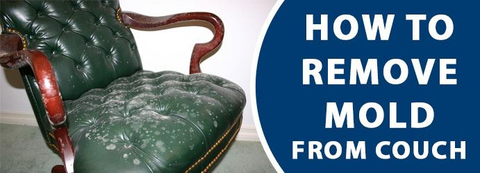How to remove mold from couch