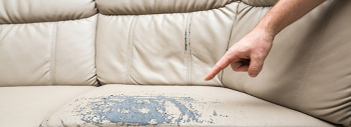 Clean The Soil on The Couch