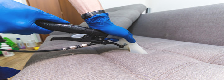 Cleaning Pets Germs From Sofa