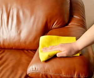 Leather-Upholstery-Cleaning