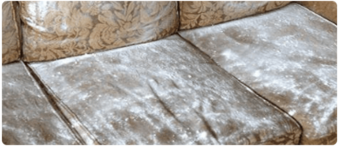 Cleaning Upholstery Without Chemicals