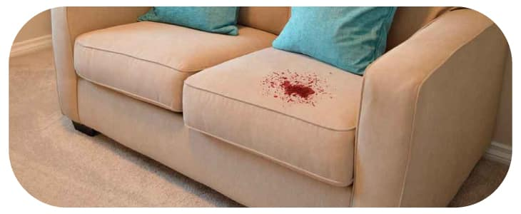 Best Upholstery Stain Removal Service